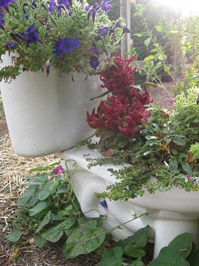Pat and Bob Schmidt said they were just trying to recycle when they installed low flow toilets and turned their old ones into flower planters in their yard.<br> Courtesy Photo