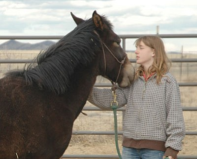 Bella Lockhart gains the trust of her wild mustang and has less than 100 days to train the filly to compete in the Mustang Heritage Foundation sponsored contest through the BLM.<br> Trib Photo/Briana Lonas