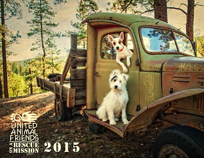 United Animal Friends is currently selling its 2015 calendars, with adopted dogs, Poppy and Jessi, pictured on the calendar's cover, and monthly photos of dogs and cats that were available for adoption during the past 12 months. The photography and calendar design were donated by Lisa Faust, a local professional photographer.<br> Courtesy photo