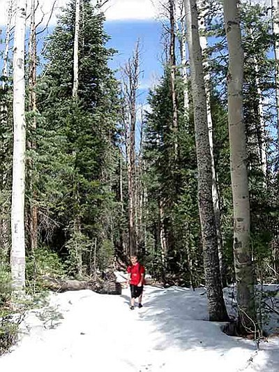 Hiking Bill Williams Trail on March 29 sometimes means walking in snow.