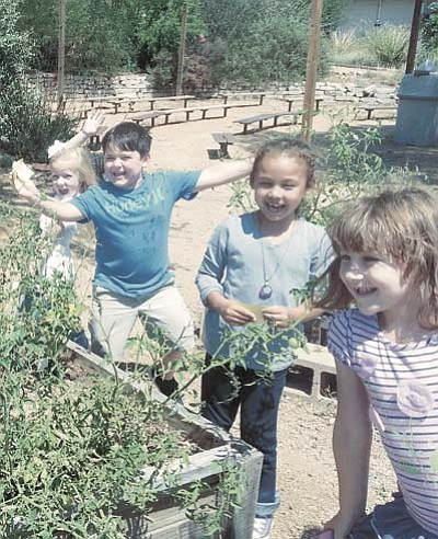 Students learn where their food comes from by growing their own Coyote Springs Elementary School. They harvest the garden to make dishes such as salsa and pesto. (Student Habitat Garden)