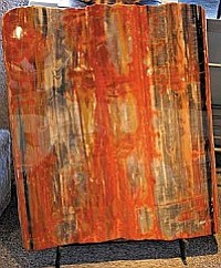 Petrified Wood Display at Touchstone Gallery.