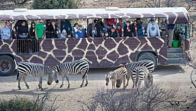 Out of Africa Wildlife Park is partnering with Peppermint Zebra in Sedona for a Kidz Art Contest this month.