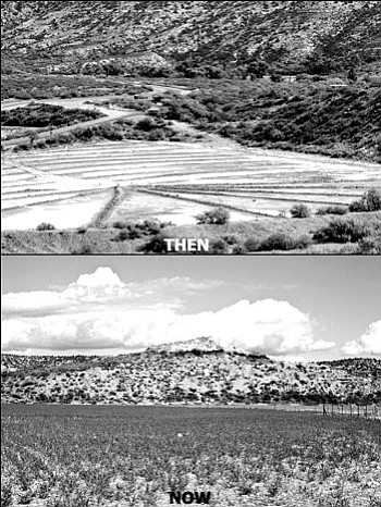 It took half a century, but the orange scar of smelter tailings at the base of the Tuzigoot National Monument has been replaced today with 125 acres of reformed earth and green grass.<br> <i>Photo courtesy of Doug Von Gausig</i>
