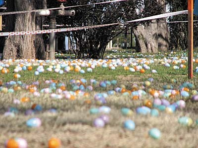 Easter Egg Hunt in Cottonwood<br /><br /><!-- 1upcrlf2 -->April 7<br /><br /><!-- 1upcrlf2 -->Cottonwood Parks & Recreation sponsors the annual Old-Fashioned Easter Egg Hunt starting at 10 a.m. at Riverfront Park with the youngest of five age divisions. The 1 to 17 month &#8220;diaper dash&#8221; division is set up east of the ramadas. Following in sequence will be the 18 to 35 month olds, then the 3 to 4 year olds, 5 to 6 year olds and the final age grouping of 7 to 8 year olds. Over $2,000 in candy and prizes will be scattered throughout the park this year for the various age groups. Children must provide their own bags/sacks/baskets. <br /><br /><!-- 1upcrlf2 -->Contact the Parks and Recreation Department at (928) 639-3200.