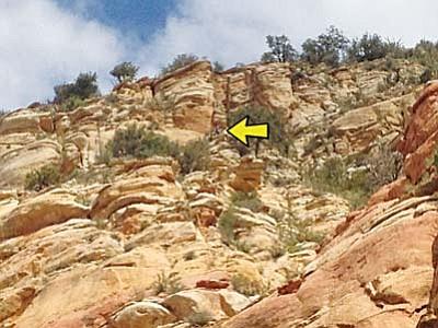 The arrow shows the location  where Sedona hiker Douglas Sims' body was recovered. Photo courtesy Chief Kris Kazian/ Sedona FD