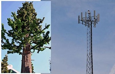 Cell towers, disguised or not, have been a topic of controversy in Cottonwood.