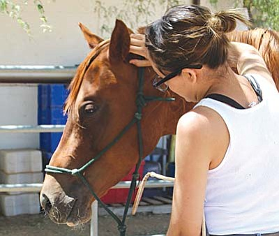 Horse Care Volunteers Needed<br /><br /><!-- 1upcrlf2 -->Connections Equine Therapy located in Cornville is looking for volunteers to help with horse care.They offer Therapeutic Riding and other services designed to improve the health and wellbeing of individuals facing a wide range of challenges. <br /><br /><!-- 1upcrlf2 -->Duties include feeding, grooming, and cleaning pasture and barn areas.This is your opportunity to get involved with a great group of people, get to know some wonderful horses and help a worth-while cause. No experience necessary – training provided. For further information call (928) 639-0791