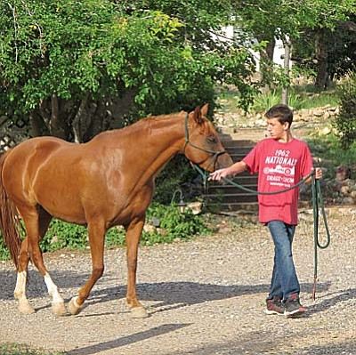 Volunteers needed at connections equine therapy program<br /><br /><!-- 1upcrlf2 -->Connections Equine Therapy in Cornville needs volunteers for horse care and to assist clients in its Therapeutic Riding Program. No experience necessary – training provided. Minimum age 14. Must be physically fit. At least one shift per week; eight-week commitment required<br /><br /><!-- 1upcrlf2 -->For further information call 928-639-0791 or email: connections @commspeed.net.