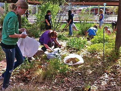 """Gardens for Humanity is currently working with seven school gardens in our area, and we have an art and environmental education program, """"Celebrating the Art in Earth,"""" that combines the school garden at five of those schools with nature-based art activities."""