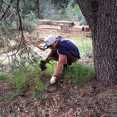 The gardening calendar in Sedona and the Verde Valley allows for some flexibility due to our long growing season, however there are some important times to observe in order to get the most help from nature.