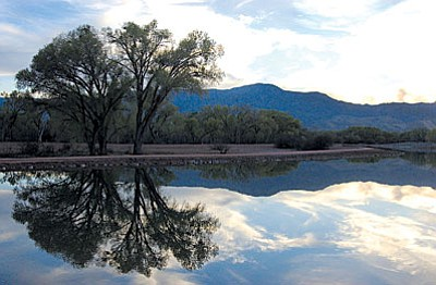 Participants in the First Day Hike at the Dead Horse State Park in Cottonwood will hike along the park's lagoons, where there are frequent sightings of water fowl.