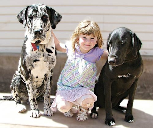<br>Photo Kathy Grumbine<br> Neela Grumbine and her dogs Flash (black and white) and Shadow (black) will attend the WAAG vaccination clinic at the Williams Rodeo Barn on Saturday.