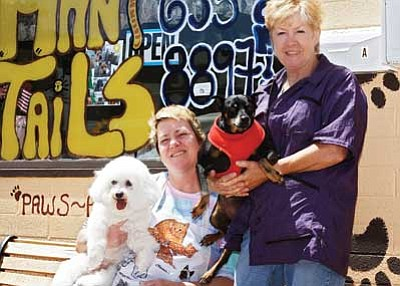 Ryan Williams/WGCN<br> Britta Anderson (left) and Bruni Loprieato spend some quality time with two of their clients. The two recently opened Many Tails pet grooming located in downtown Williams.