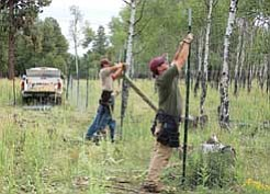 Photo/U.S. Forest Service, Kaibab National Forest <br> Kaibab National Forest employees construct protective fencing around a number of severely imperiled aspen clones on the Williams Ranger District.