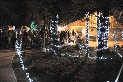 The walk-through portion of Bearizona sparkles with light during last year's Taste of Williams event. Photo/Jan Shirley