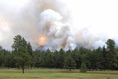 The Mud Fire burns about 10 miles south of Williams. The lightning-caused fire is about 308 acres. Photo/U.S. Forest Service