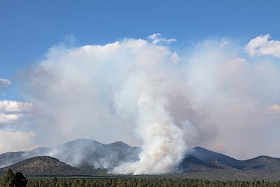 The Sitgreaves Complex fire reaches 4,600 acres Aug. 6. Forest Service officials expect the fire to grow significantly in the next few days. Ryan Williams/WGCN