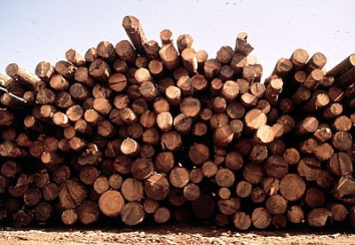 Good Earth recently announced plans to open a lumber mill on Garland Prairie Road in Williams. Graphic/WGCN