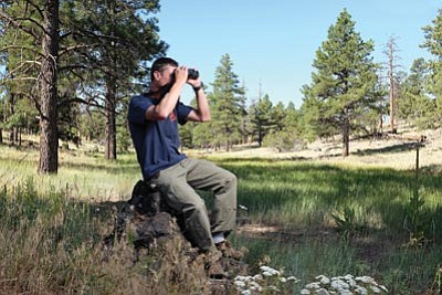 Kaibab National Forest Wildlife Biologist Justin Schofer watches a fledgling Great Blue Heron in a nest near Cataract Lake in Williams. Ryan Williams/WGCN