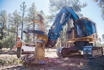 Kaibab Timber Sales Administrator John Magura stands next to a feller-buncher on the Pomeroy Task Order area near Williams. Ryan Williams/WGCN