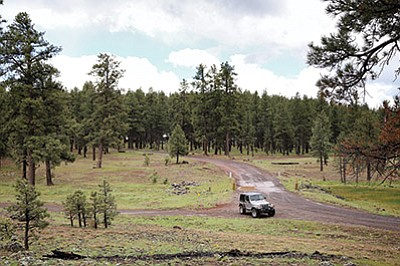 Kaibab National Forest managers could add more camping areas to the Tusayan  and Williams Ranger Districts 30e56a133