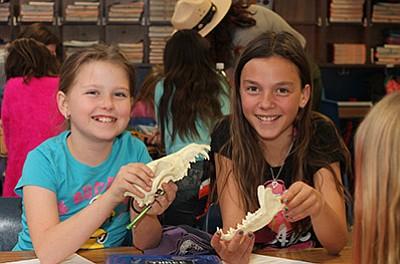 Brianna Baldosky and Riley McNelly analyze the teeth of an animal skull to determine if the animal eats meat. Loretta Yerian/WGCN