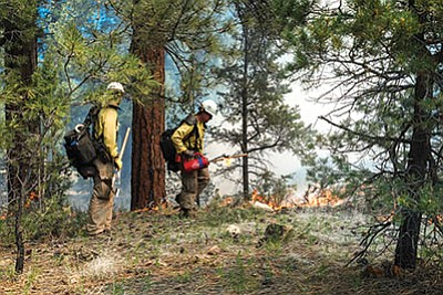 Rocky Mountain hotshots and Grand Canyon fire crews work on a prescribed burn at the Grand Canyon May 19. Loretta Yerian/WGCN