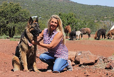 Llama Palooza Ranch's Pamela Balin spends time with some of the animals at her dog boarding facility. Wendy Howell/WGCN