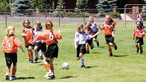 Williams AYSO youth soccer teams ‹ such as the U6 girls team from last year pictured above ‹ are playing currently, but only have three home field appearances scheduled for this year. The next one is on July 22 at the Williams High School fields.