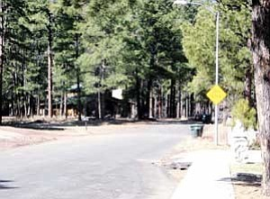 The end of Allston Way would have been the beginning of Forest Canyon Estates. Access to the development along with drainage issues were discussed at the March 8 Williams City Council meeting.