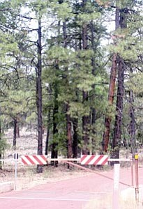Officials with the U.S. Forest Service predict a mid-August finish date for their proposed action plan concerning forest roads within the Williams Ranger District of the Kaibab National Forest.