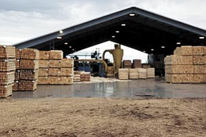 Southwest Forest Products currently operates a sawmill that employs more than 50 people.