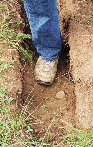 <br>Patrick Whitehurst/WGCN<br> Off road travel has left a number of deep ruts in the forest from travelers driving RVs and other vehicles over parts of the forest.