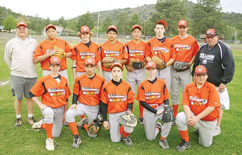 <br>Patrick Whitehurst/WGCN<br> Members of the Williams Juniors Little League team pose for the camera recently. The team includes players Adrian Solano, Jacob Harner, Jimmy Perkins, Kenneth Barker, Carlos Amavizca, Coty Baxter, Ethan Berry, Jordan Brown, Jorge Davalos, Kohl Nixon, Joaquin Salaz and Blain Mitchell.