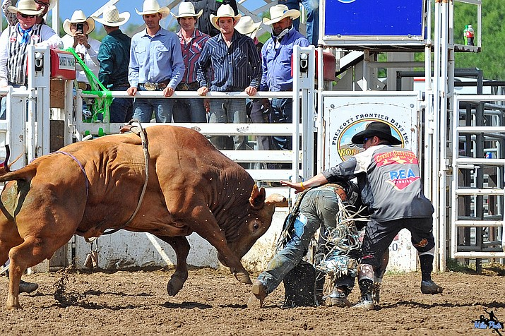 The 2016 Prescott Frontier Days Rodeo is scheduled to begin Tuesday, June 28, at the Prescott Rodeo Grounds.