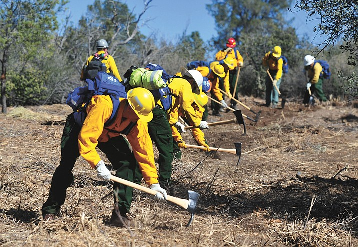 Students learn to work as team in the arduous job of cutting line during the field day Wednesday, March 9, for the Basic Wildland Firefighting class at the Arizona Wildfire Academy.