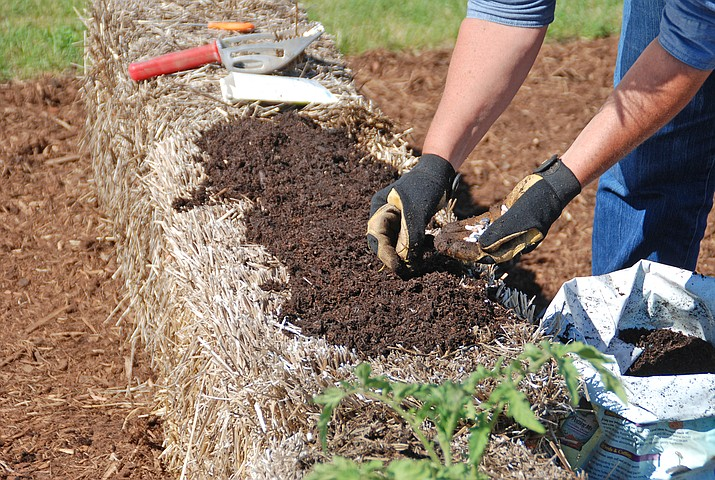 Straw bale gardening is easy and rewarding.