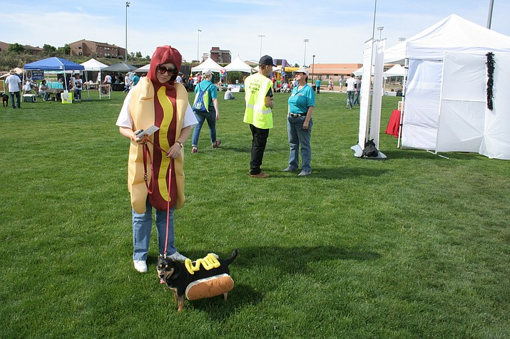 Jerra Nardona and her dog, Berlin, came prepared for the look-alike competition at the Yavapai Humane Society's annual Walk for the Animals, held on Saturday, May 14.