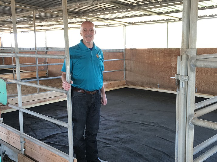 Ed Boks, executive director of the Yavapai Humane Society, shows off a new type of padding for horse stalls. He said they plan to use it in two holding stalls at the new Chino Valley rescue center on a trail basis.