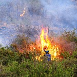 Fire crews work hot spots as fire burns through the hills on the south side of Yarnell Wednesday afternoon. (Les Stukenberg/The Daily Courier)