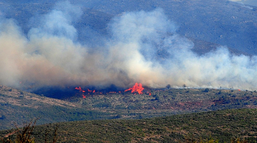 Flames burn brush on the Tenderfoot Fire near Yarnell Thursday afternoon. (Les Stukenberg/The Daily Courier)