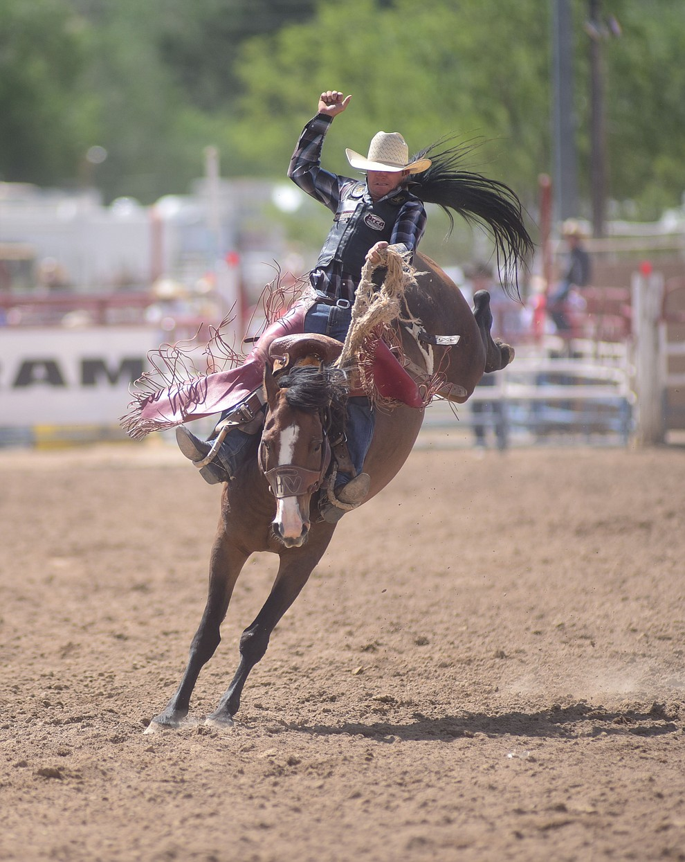 Cody Anthony on Shimmy Valley during the final performance of the 2016 Prescott Frontier Days Rodeo Monday afternoon. (Les Stukenberg/The Daily Courier)