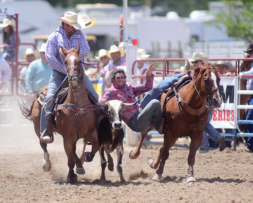 Cutter Parsons has a 4.8 second run and won the overall steer wrestling title during the final performance of the 2016 Prescott Frontier Days Rodeo Monday afternoon. (Les Stukenberg/The Daily Courier)