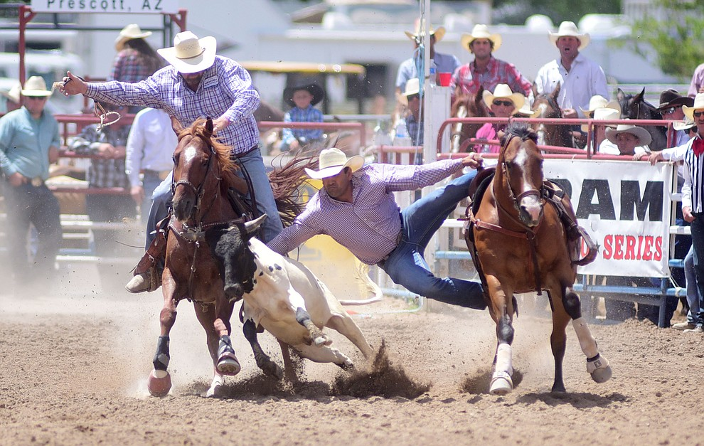 Damian Padilla has a 8.3 second run during the final performance of the 2016 Prescott Frontier Days Rodeo Monday afternoon. (Les Stukenberg/The Daily Courier)