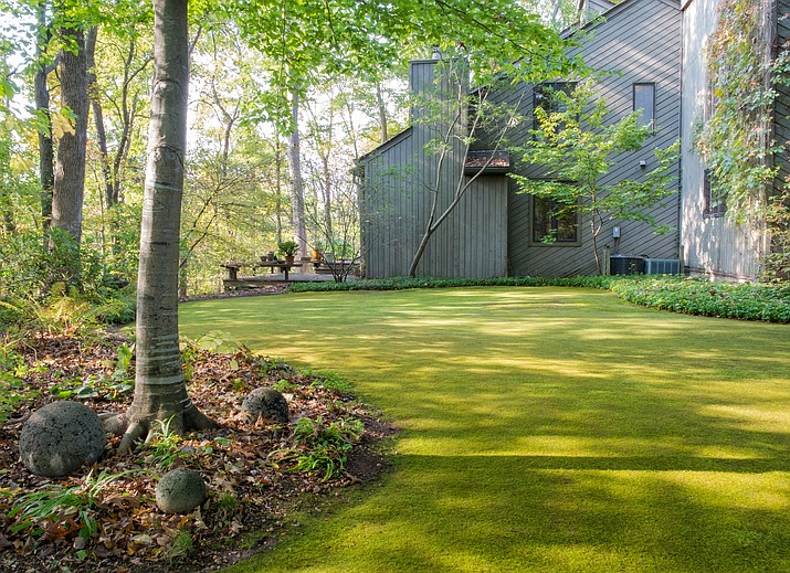 Moss Can Be A Versatile, Beautiful Addition To Any Garden