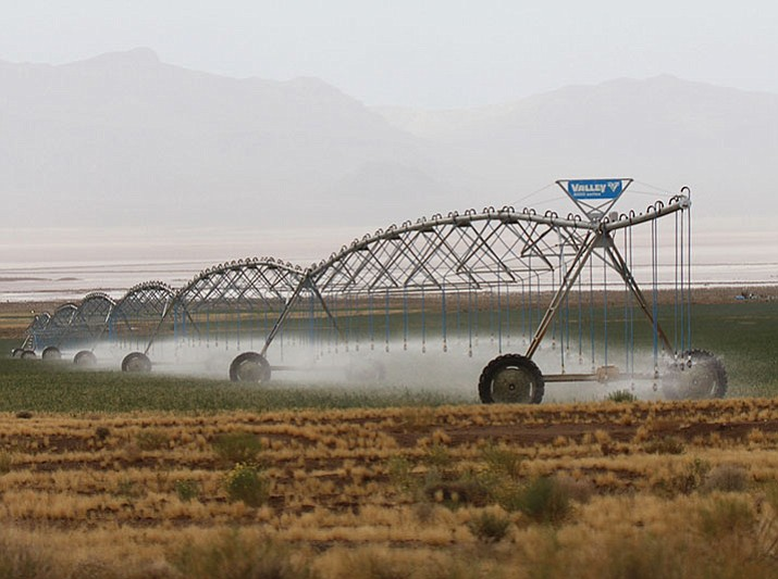 An irrigation system at work on Kingman Farms.
