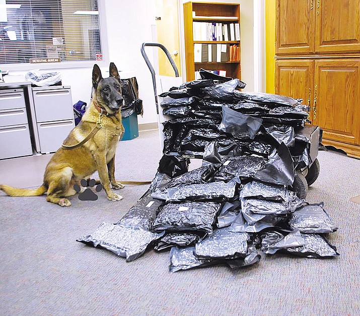 K-9 Sam stands by his latest bust, 66 pounds of marijuana, after a traffic stop Friday on Interstate 40.
