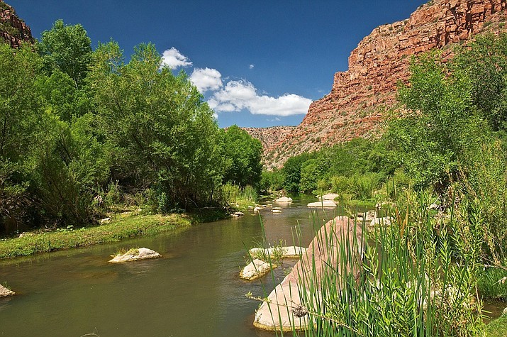 Red rocks, blue sky, and green trees on the upper Verde River.