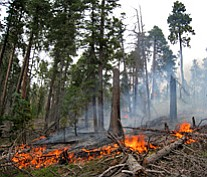 The National Park Service and U.S. Forest Service will initiate a series of prescribed burns on the North and South Rims.